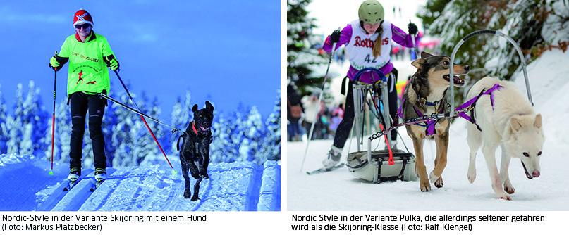 Nordic-Style Varianten
