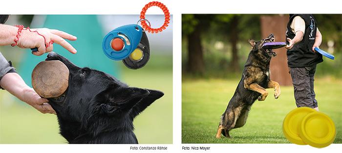Fatastic DuraFoam Ball & Clicker