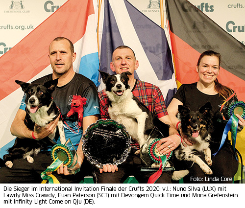 Sieger Crufts 2020 Agility