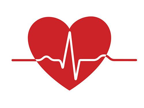 Herz-Kardiogram